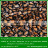 2015 New Crop Black Watermelon Seeds For Sale