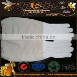 Best selling bee tools! Factory suppiler the popular beekeeping gloves/cotton bee gloves