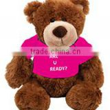 embroidery imprinted promotional logo purple t-shirt bear dress scarf beanbag bandana t-shirt bib tie ribbon animal toys
