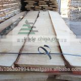 Sawn White Birch timber wood, kiln dried 6-10% AA