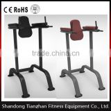Vertical Knee Raise/tz-4001/Factory Directly Sale pin loaded /Commercial Fitness Equipment