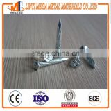 Factory supply good quality thumb brand angular spiral zinc coated stainless hardened concrete steel nail