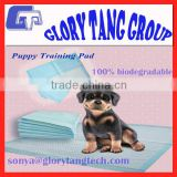 2016 New Arrival training pads, 100% biodegradable puppy training pad                                                                         Quality Choice