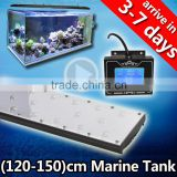 sunrise sunset programmable led aquarium light for saltwater fish and aquatic plant