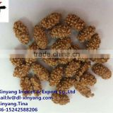 coated peanuts natural flavor/flour japanese roasted coated peanuts mixed/wholesale coated peanuts