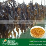 10% 20% 40% 50% Natural fucoxanthin powder kelp extract