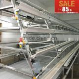 Animal & Poultry Husbandry Equipment chicken layer cage with auto feeding system