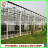 Commercial/agricultural large span glass green house for strawberry/tomatoes