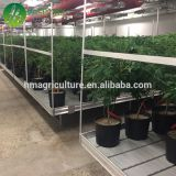 High Quality ebb and flow rolling plastic trays hydroponic flood seedbed
