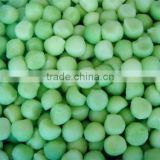 IQF frozen style green melon ball