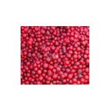 IQF wild lingonberry (info14 at lgberry dot com dot cn)