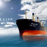 International shipping, global Shuangqing to door
