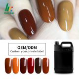 hot sale Oem popular uv color gels for nail painting