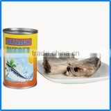 425g canned sardine in club can