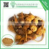wholesale China pure natural maca extract powder 10:1