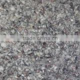 Cotton seed Hull From India