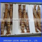 fresh frozen black tiger shrimp