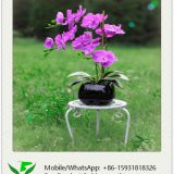 46cm Artificial Orchid in Ceramic Pot