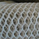 Hot sale chicken plastic wire mesh Extruded plastic plain nets