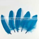 hot sell plumage teal feathers goose feather for sale