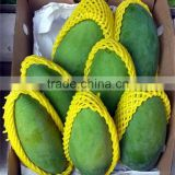 Any Color&Sizes Available Customized Food Grade Custom-made Foam Polypropylene Mesh Net for Fruit