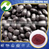 non-gmo Black Soybean Extract/Anthocyanin Extract Powder/Organic black soybean hull extract Anthocyanin 25%