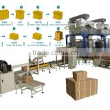 Automatic Carton Filling and Packing Machine