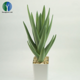 China wholesale fake plastic aloe artificial aloe with pot