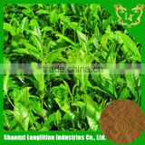 Nice Stuff ! wholesale price plus good service high quality powder green tea extract suppliers by ISO GMP manufacturer ! ! !