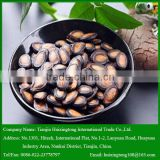 Black Middle Sized Melon Seeds for Human Consumption