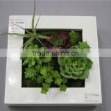 for home garden tiles deco 30*30*7cm paint color indoor artificial succlent boutique plant wall laminate combinations Ejq10 1201