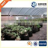 Good Quality Plastic seedlings vegetable grow holes bags