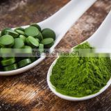 factory OEM Supply high protein and quality spirulina powder and tablets