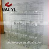 Hot Sale Galvanized Cage For Pigeon And Pigeon Cage Design