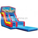 2015 Best selling inflatable slides!!!!home water slides for sale,inflatable slides for kids, dunk tank rental