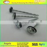 anping XKX umbrella head roofing nail / galvanized roofing nail with rubber washer made in china