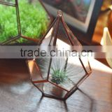 home decoration flower terrarium vase for wedding favor centerpiece >< hanging large geometric glass reptile