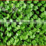 2013 Supplies Garden Buildings all kinds of garden fence gardening expended fences netting