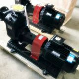 ZW Self priming sewage drainage pump for wastewater