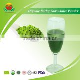 Manufacturer Supply 200 mesh Organic Barley Grass Juice Powder/Organic Barley Juice Green Powder