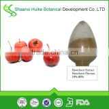 Inventory Hawthorn berry leaf extract