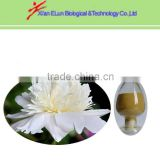 Factory supply White Peony Root Extract Paeoniflorin by HPLC