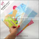 High Quality off-set printing a4 size pp file folder /plastic clear file folder /file holder