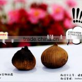 Hot selling Japanese top quality black garlic clove