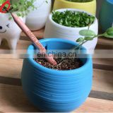 natural promotion wood flower fruit grass seed sprout pencil