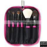 6 PCS pink portable travel size brush set with powder brush, blush brush, facial brush, eyeshadow brush
