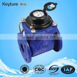 Large Caliber Direct Reading Remote Water Meter