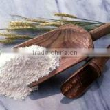 Vital Wheat Gluten for food product