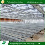Eco-friendly greenhouse planting seedbed galvanized rolling bench