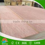 BB/CC grade furniture backing board plywood made in china